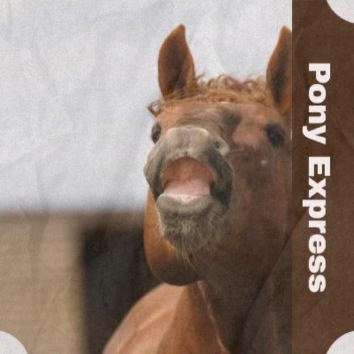 Pony Express de Yves Montand, Marilyn Monroe, Mikis Theodorakis, Percy Sledge, George Gershwin, Jo Basile, Nino Rota, MGM Studio Orchestra, Chubby Checker, Bobby Darin