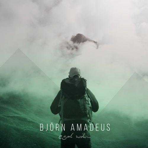 Egal wohin by Björn Amadeus