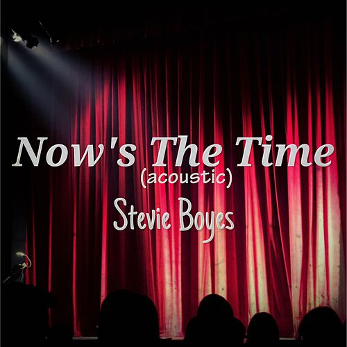 Now's the Time by Stevie Boyes