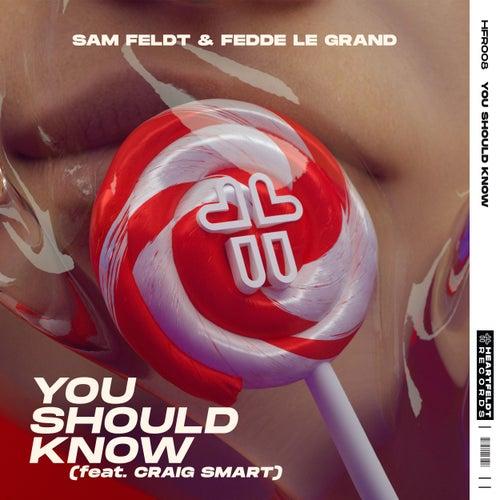 You Should Know (feat. Craig Smart) by Sam Feldt