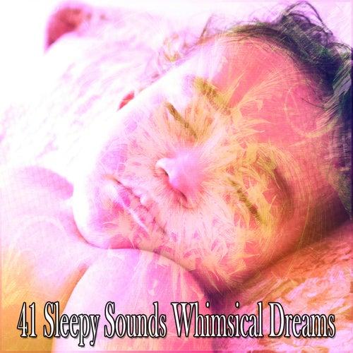 41 Sleepy Sounds Whimsical Dreams de Ocean Sounds Collection (1)