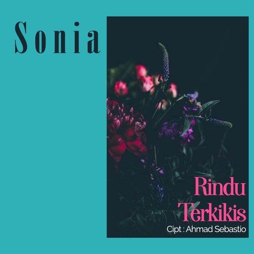 Rindu Terkikis von Sonia