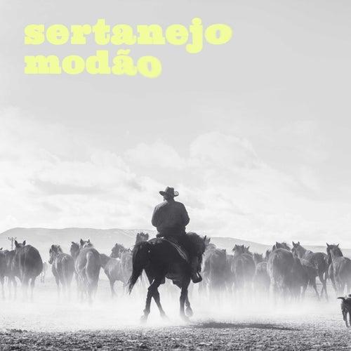 Sertanejo Modão de Various Artists