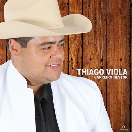 Carreiro Nestor by Thiago Viola