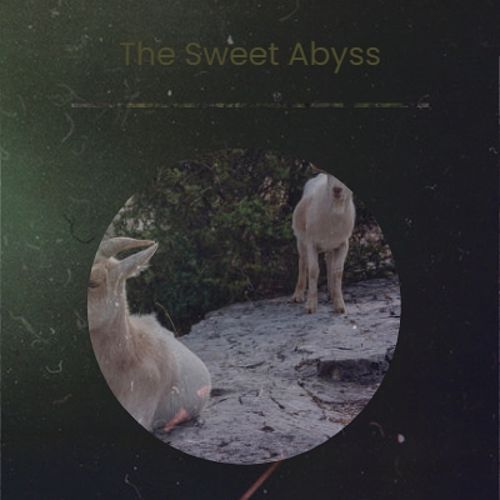 The Sweet Abyss de The Warner Bros. Studio Orchestra, Conway Twitty, The Ventures, Bobby Hackett, Carmen McRae, Tennessee Ernie Ford, The Bachelors, Carole King, John Barry, Silvio Rodriguez