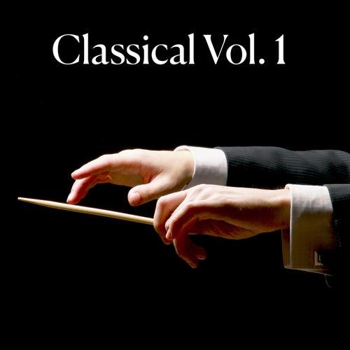 Classical Vol. 1 di Various Artists