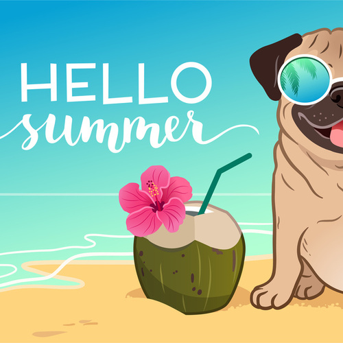Hello Summer de Various Artists