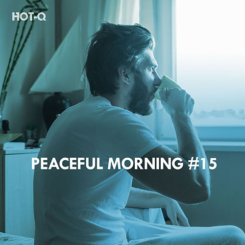 Peaceful Morning, Vol. 15 by Hot Q