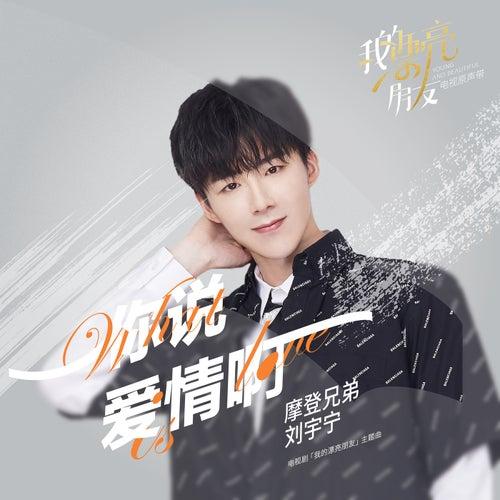 Ni Shuo Ai Qing A (Dian Shi Ju