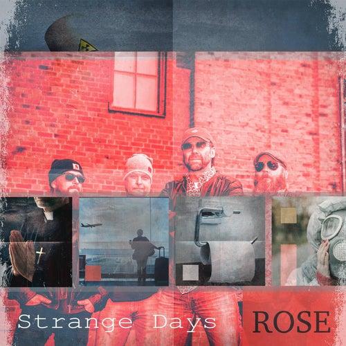 Strange Days von Rose