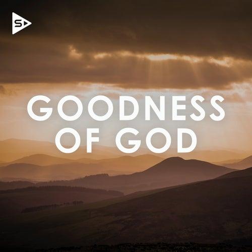 Goodness of God de Various Artists