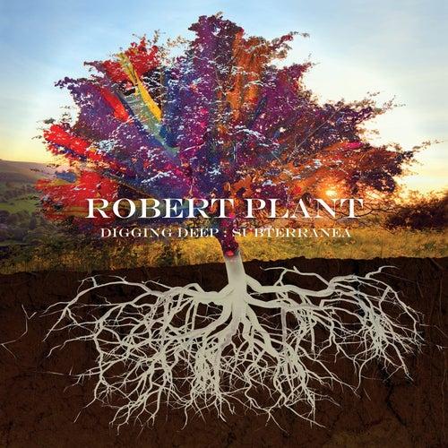 Charlie Patton Highway (Turn it Up, Pt. 1) de Robert Plant