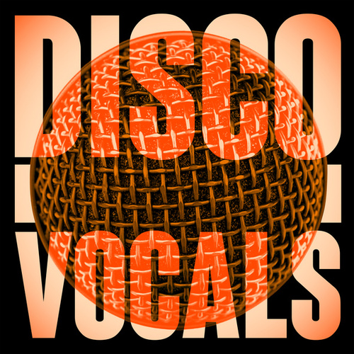 Disco Vocals: Soulful Dancefloor Cuts Featuring 23 Of The Best Grooves by Various Artists
