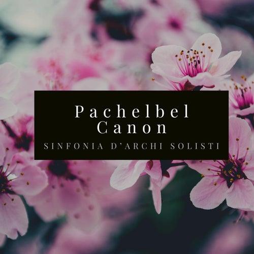 Pachelbel: Canon and Gigue in D Major, P.37: No. 1, Canon von Sinfonia D'archi Solisti