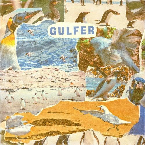 Gulfer von Gulfer
