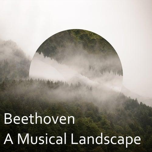 Beethoven: A Musical Landscape de Yehudi Menuhin