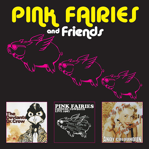 Pink Fairies and Friends by The Pink Fairies