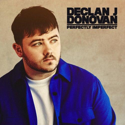 Perfectly Imperfect von Declan J Donovan