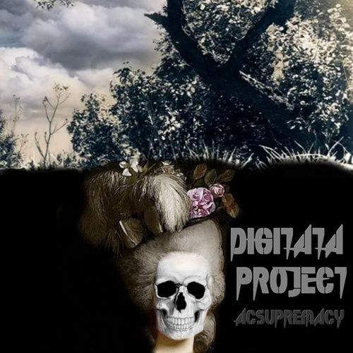 Digitata Project by ACSupremacy