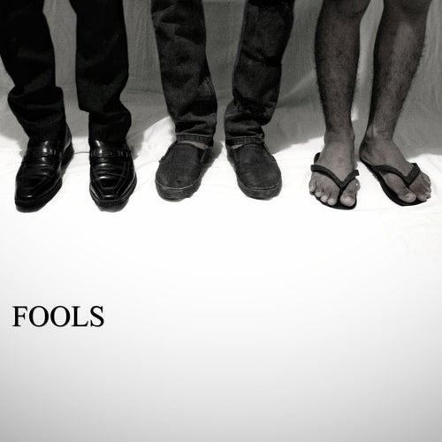 Fools von Josh