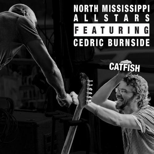 Catfish by North Mississippi Allstars