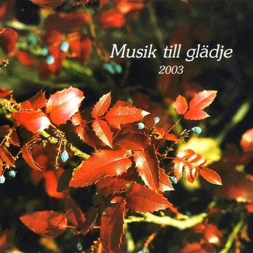 Musik till Gladje 2003 de Various Artists