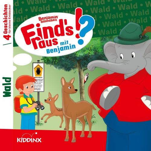 Find's raus mit Benjamin: Wald von Benjamin Blümchen