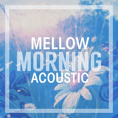 Mellow Morning Acoustic by Various Artists