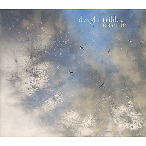 Cosmic by Dwight Trible
