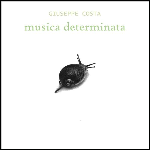 Musica Determinata by Giuseppe Costa