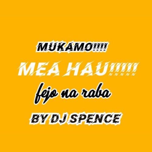 Mukamo! MEA hau (fejo na Raba ) von DJ Spence