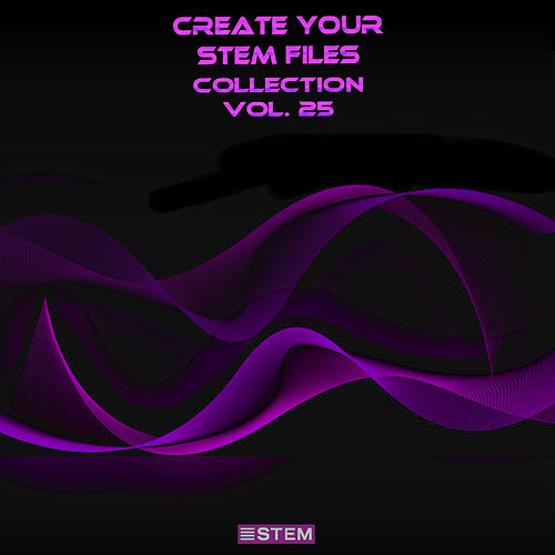 Create Your Stem Files Collection, Vol. 25 (Instrumental Versions And Tracks With Separate Sounds) by Express Groove