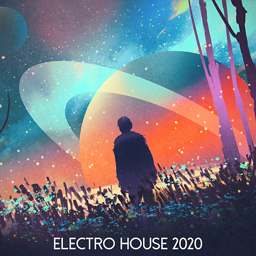 Electro House 2020 von Various Artists