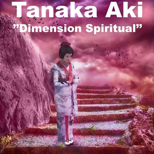 Dimension Spiritual di Tanaka AKI