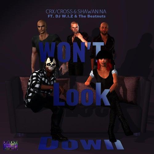 Won't Look Down (feat. DJ W.I.Z & The Beatnuts) de CRX/Cross & Shawan Na