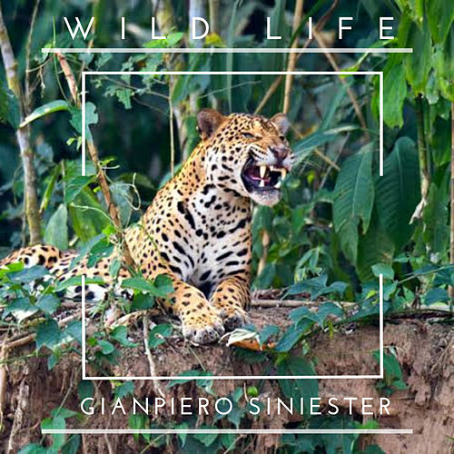 Wild Life de GianPiero Siniester