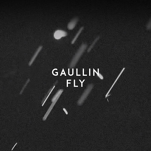 Fly von Gaullin