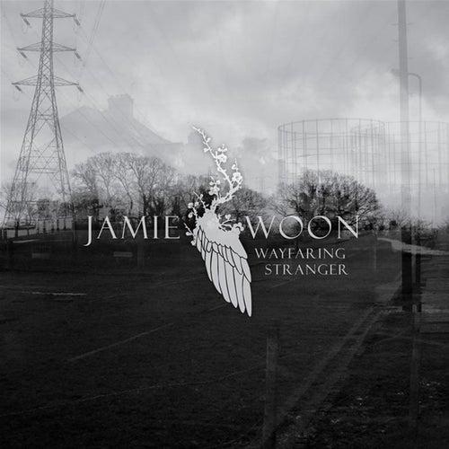 Wayfaring Stranger Ep de Jamie Woon