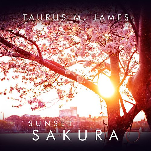 Sunset Sakura by Taurus M. James