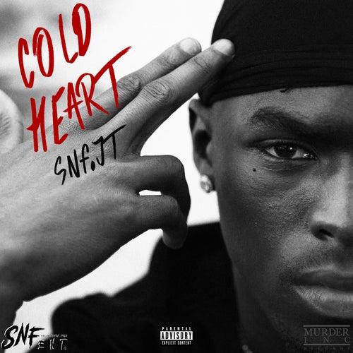 Cold Heart de SNF.JT