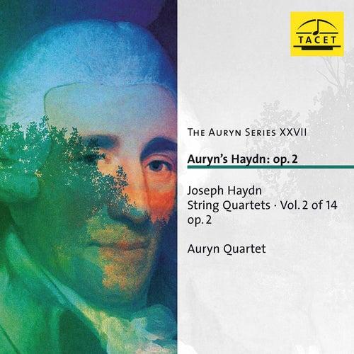 The Auryn Series, Vol. 27 von Auryn-Quartet