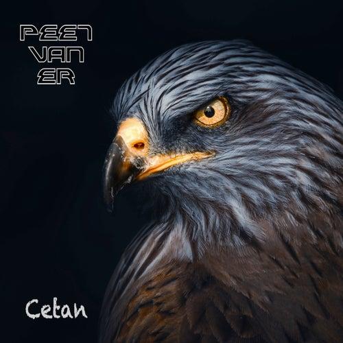 Cetan by Peet Van Er
