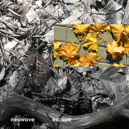 Escape by Neowave