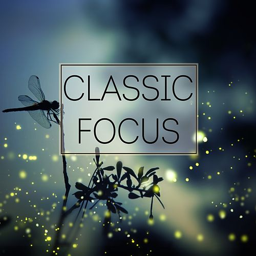 Classic Focus by Rachel Conwell