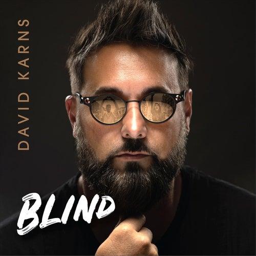 Blind by David Karns