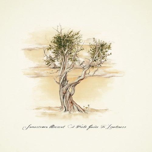 A Field Guide to Loneliness de Jamestown Revival