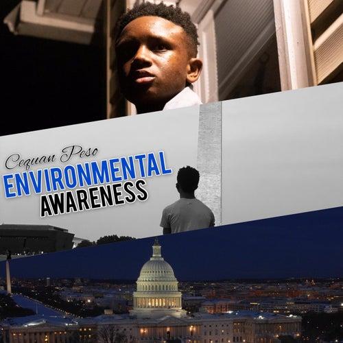 Environmental Awareness von Cequan Peso