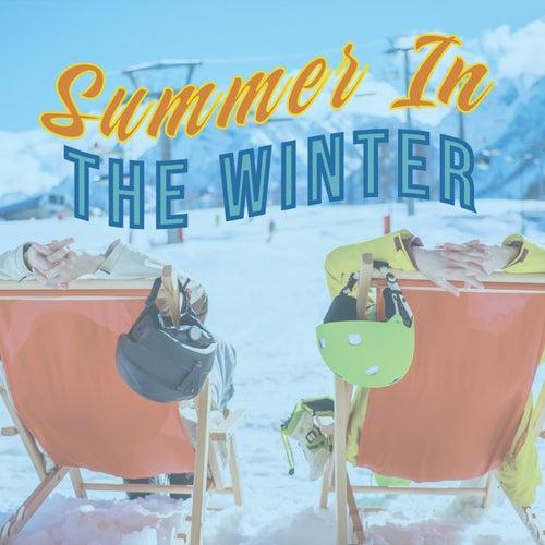 Summer In The Winter de Various Artists