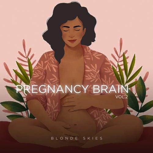 Pregnancy Brain, Vol. 2 by Blonde Skies