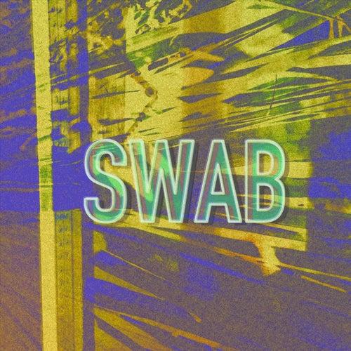 Hornfels von Swab